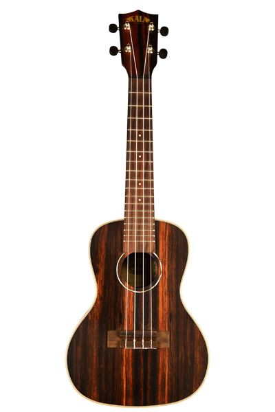 Kala Ebony Concert Uke with Bag